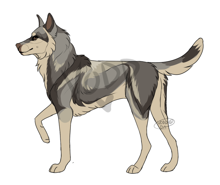 Wolf adopt - OPEN (points) by Vodd