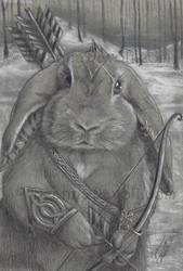 Trail Warrior by deanna23