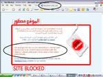 Orkut In UAE