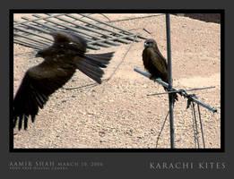 Karachi Kites by aash