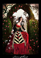 Queen of Hearts Contest entry