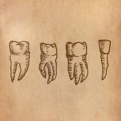 Tooth drawing