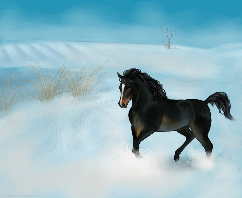 Runaway by Hidatsenka