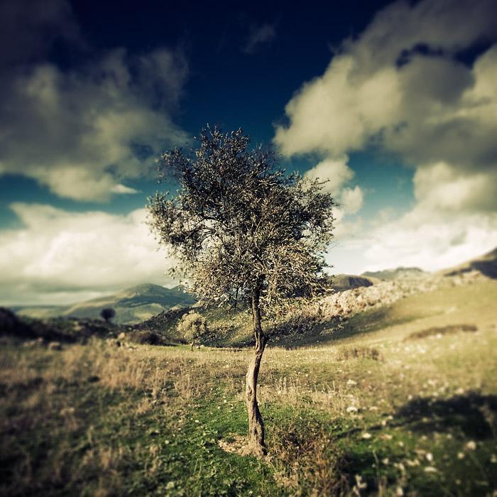 La canzone di Alain Delon by AntonioAndrosiglio