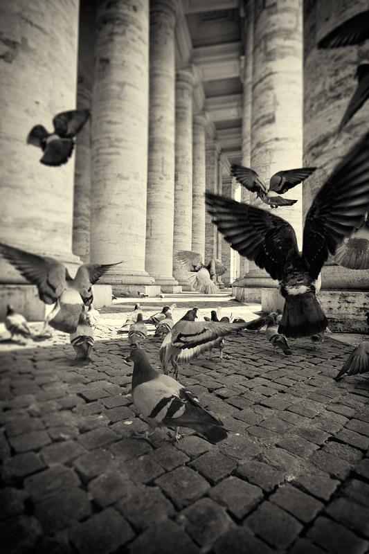 Into the flight by AntonioAndrosiglio