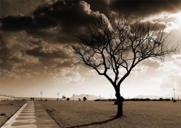 Returning on my feets by AntonioAndrosiglio