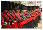 Trooping The Colour - 5