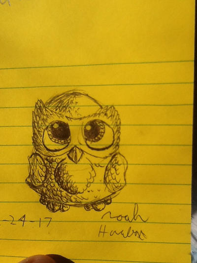 Cute owl by RawmanNoodles