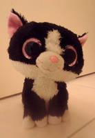 just a cute cat by amyaimei