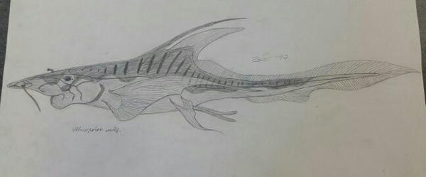Helicoprion undef. by TheDubstepAddict