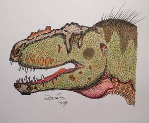 Tyrannosaurus rex MB.R.91216 Tristan Otto