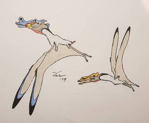 Iberodactylus andreui