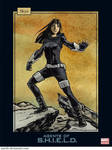 Agents of SHIELD trading cards: Skye