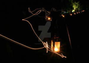 Fairy Lanterns, Killerton