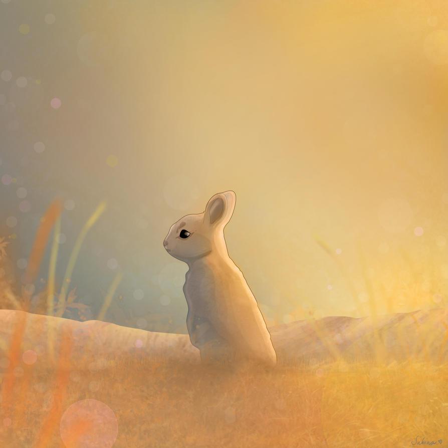 Bunny by Sabz0r