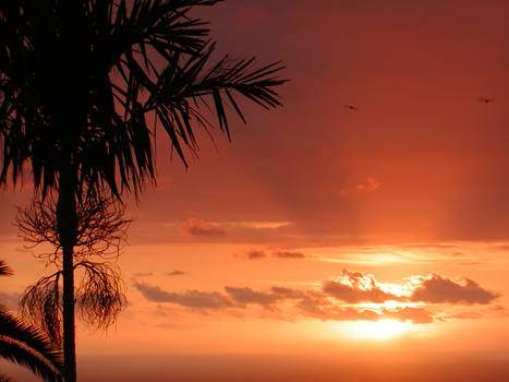 Kaela's Sunset