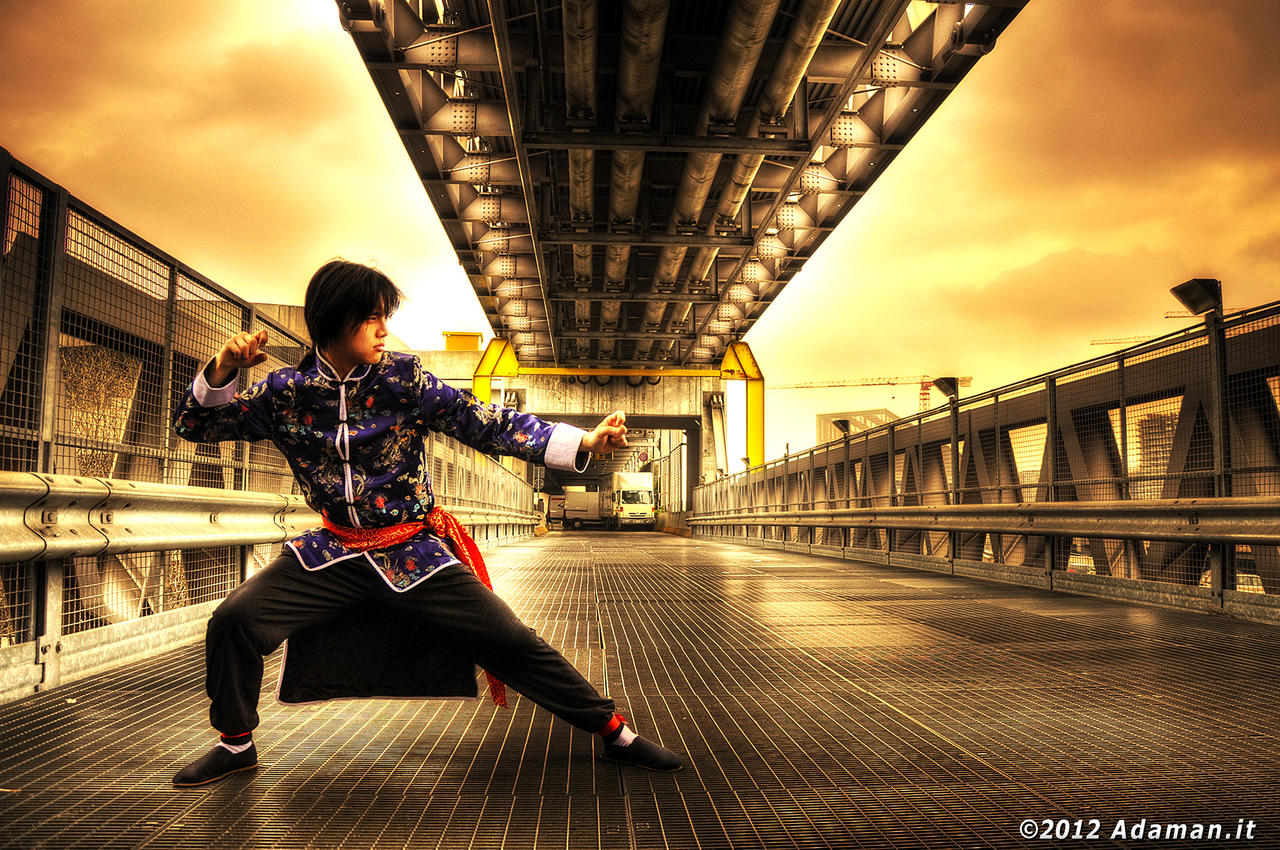 Lei Wulong: Ready, Fight! by adaman77