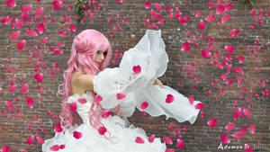 Euphemia-Sama Rose Petals by adaman77