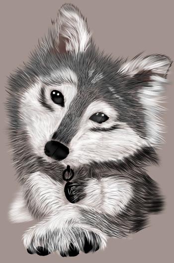 Wolf by GreenPoem