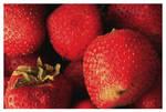 Red Rawberries