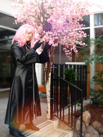 KH2 - Marluxia in pink by Orchidias