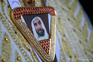 Zayed In Our Heart