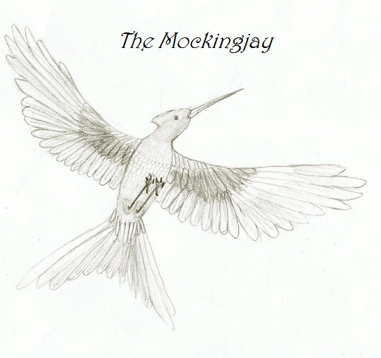 how to draw the mockingjay pin