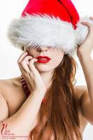 Merry Christmas... by RobertSleeper