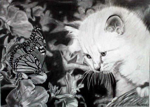 Butterfly and Kitten   graphite