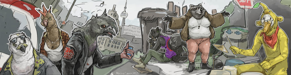Toronto Wildlife