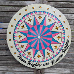 Trans Rights are Human Rights Hexsign Handpainted