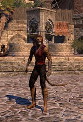 Za'kirr (Elder Scrolls Online Character #3)