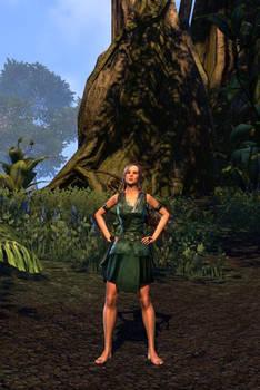 Elwyn Oakvale (Elder Scrolls Character #4)