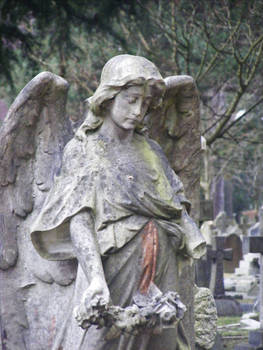 Wimborne Road Cemetery 41