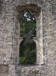 Bishops Waltham Palace 18