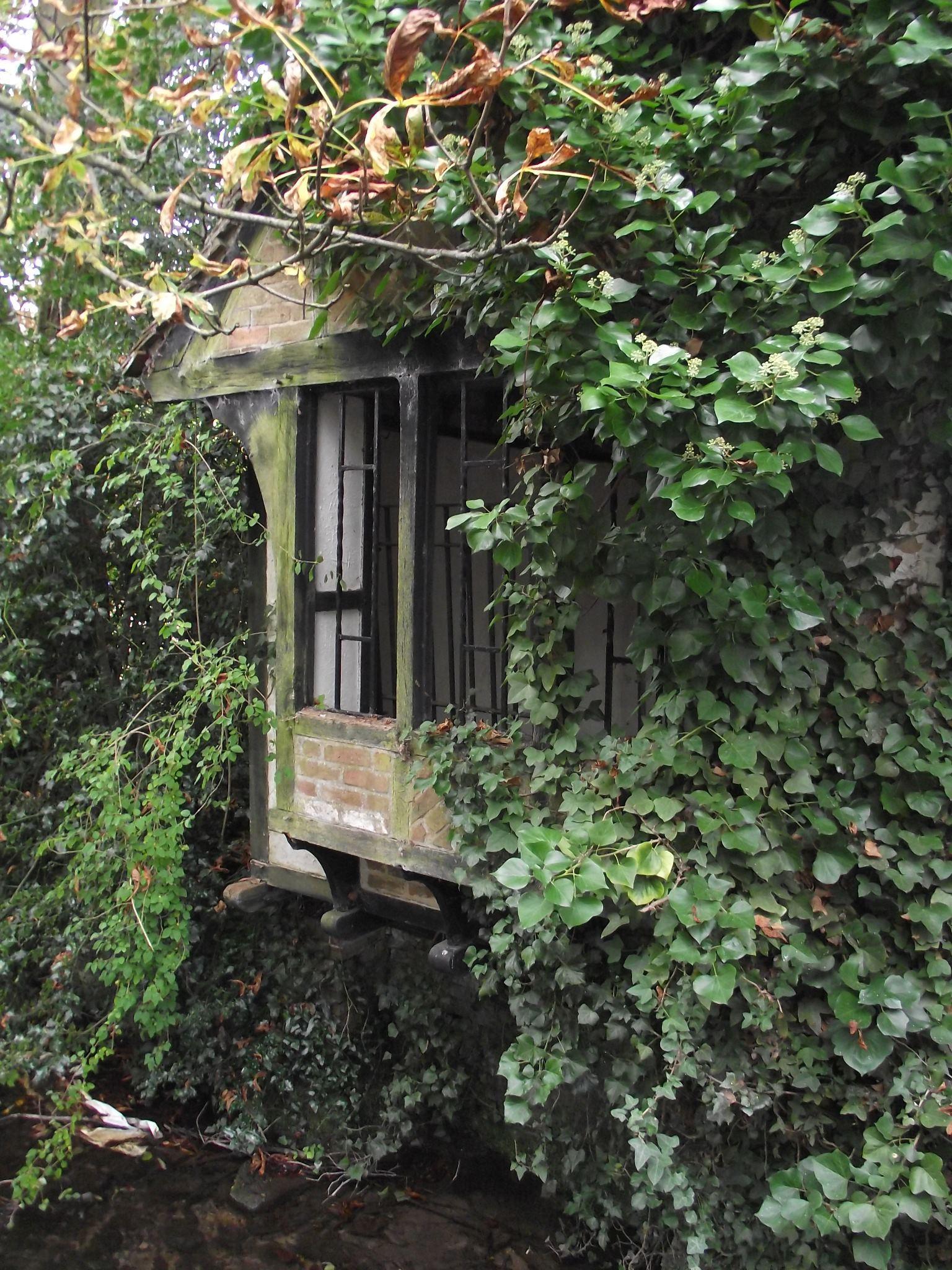Cottage Window by LadyxBoleyn