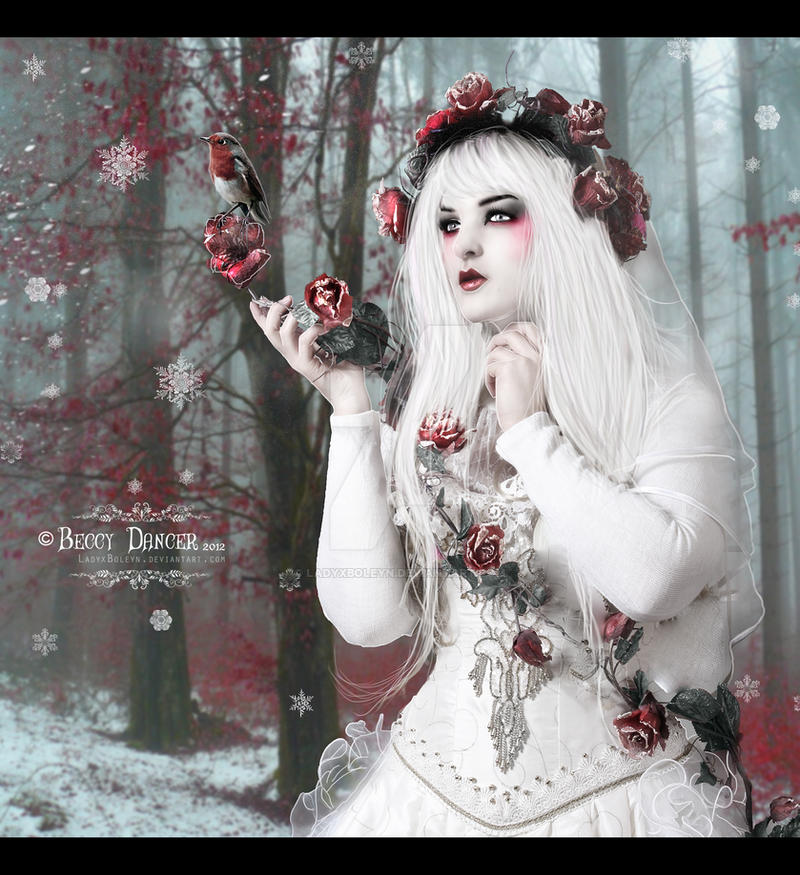Winter Rose by LadyxBoleyn
