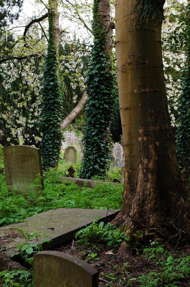 Holywell Cemetery 16 by LadyxBoleyn