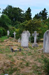 Southampton Old Cemetery 2014 50