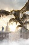 Fantastic Beasts Inter textless Thunderbird