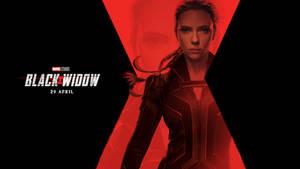 Black Widow (2020) wallpaper #3