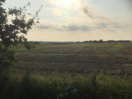 The vast farm land