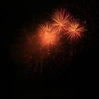 Chrysanthemum Fire by amyhooton