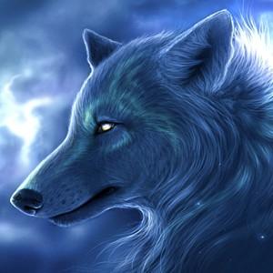 nighteyes81's Profile Picture