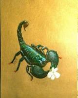 Tender Scorpio
