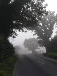 the mist by xXceinwenXx