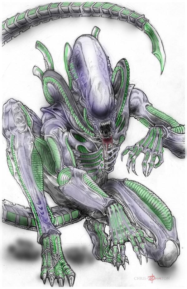 Xenomorph Alien By Chrisozfulton