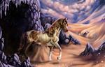 Desert of many wonders (comm)