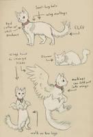 Sparky Cat Refrence by clickclackcat