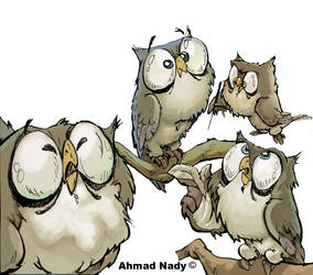 cute owl by ahmad-nady